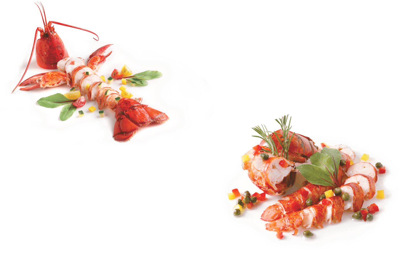 parallax lobster plate